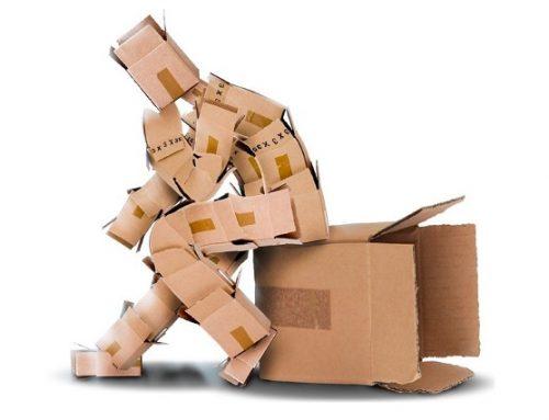 Human box de equipo
